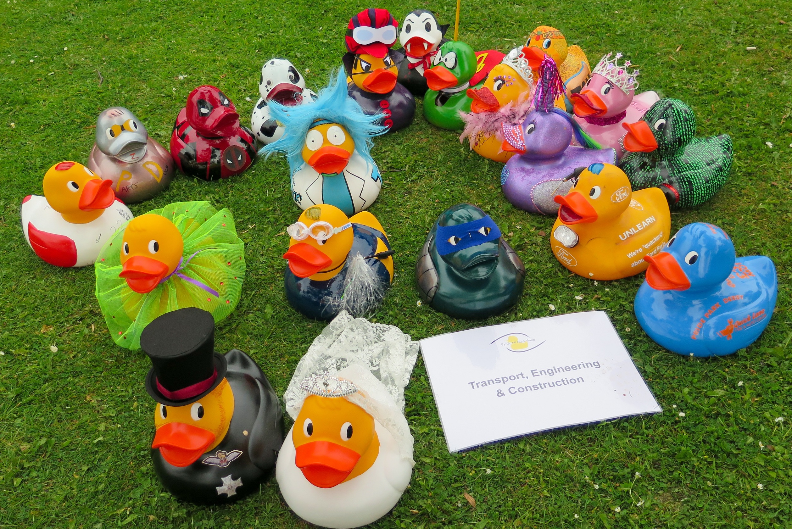 Image showing giant ducks before the 2018 Duck Race