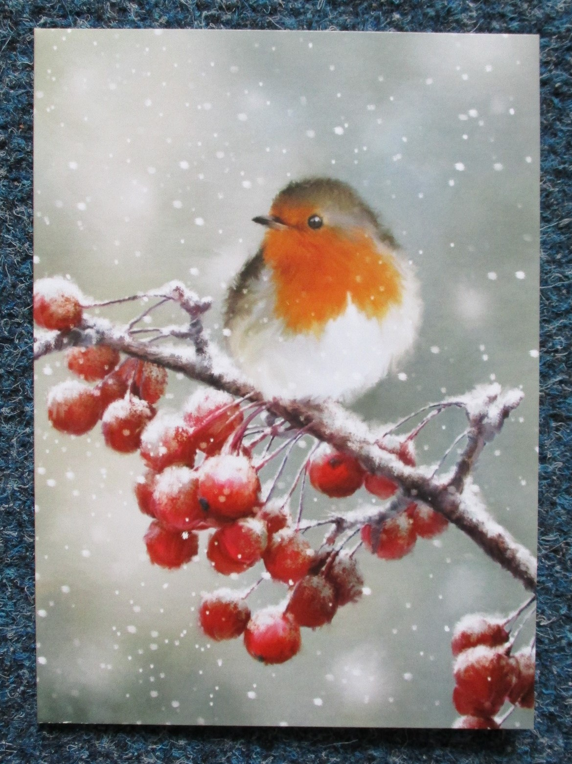 Robin and Berries £3